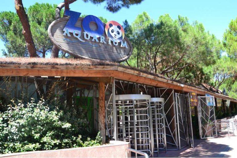 Como llegar al Zoo de Madrid